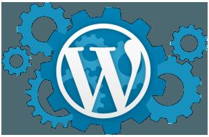 Profesyonel WordPress Destek